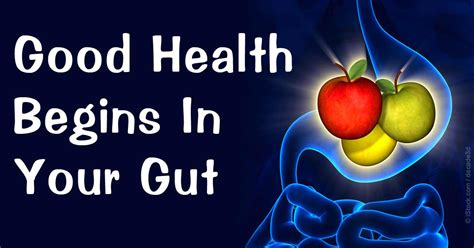 food pharmacy a guide to gut bacteria anti inflammatory foods and for health books how your gut flora influences your health
