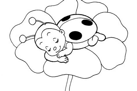 ladybug coloring page ladybug flower coloring page 533978 171 coloring pages for
