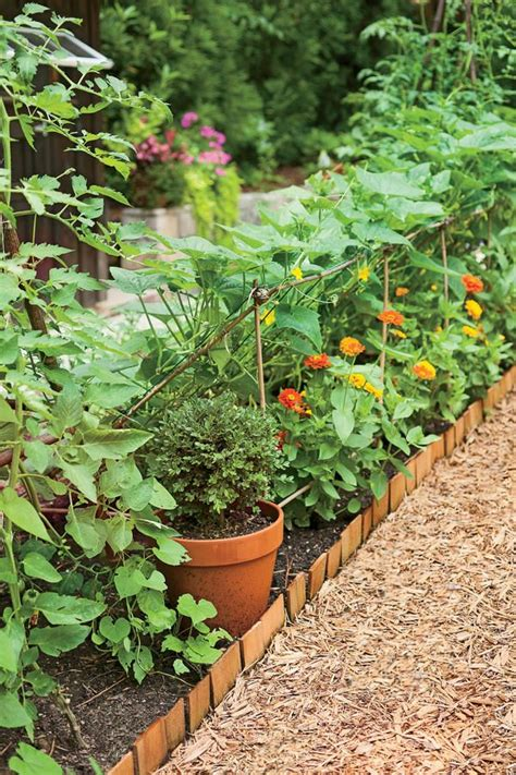 Vegetable Garden Borders 603 Best Images About Southern Garden On