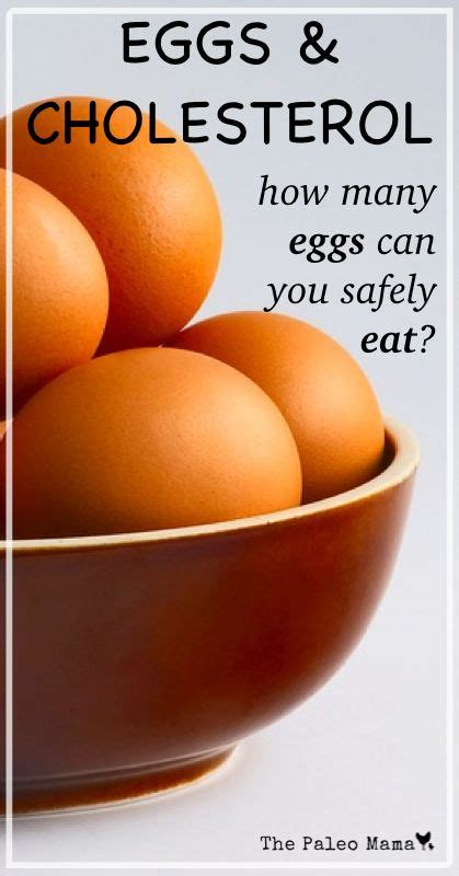 How Many C Sections Can You Safely best 25 egg facts ideas on egg replacement