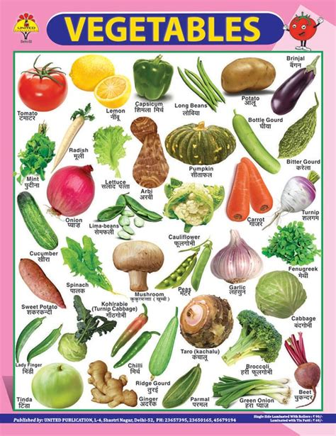 vegetables chart 22x28 educational charts 22x28 vegetable charts suppliers