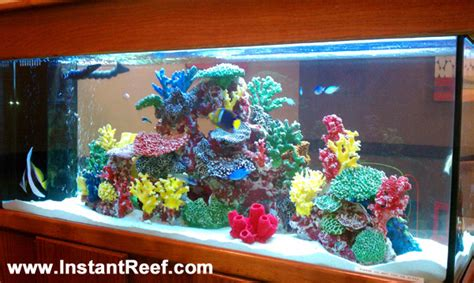Marine Tank Decorations fish aquariums on fish tanks aquarium and saltwater fish tanks
