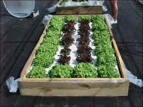 all about hydroponics