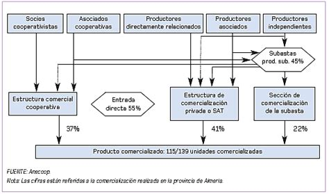 cadena de valor hortalizas el sistema de comercializaci 243 n en origen de las frutas y
