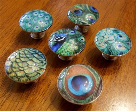 Peacock Drawer Pulls by 25 Best Ideas About Peacock Room On Black