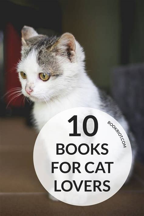 is for cat a gift book books 10 books for cat book riot