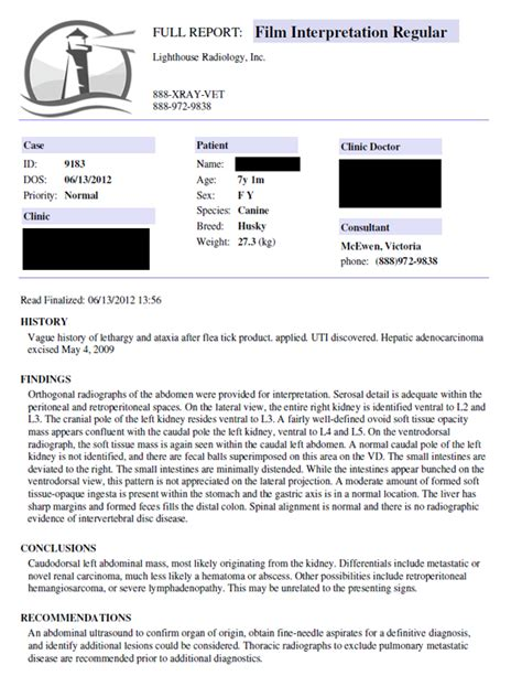 Sle Teleradiology Report Lighthouse Radiology Radiology Report Template