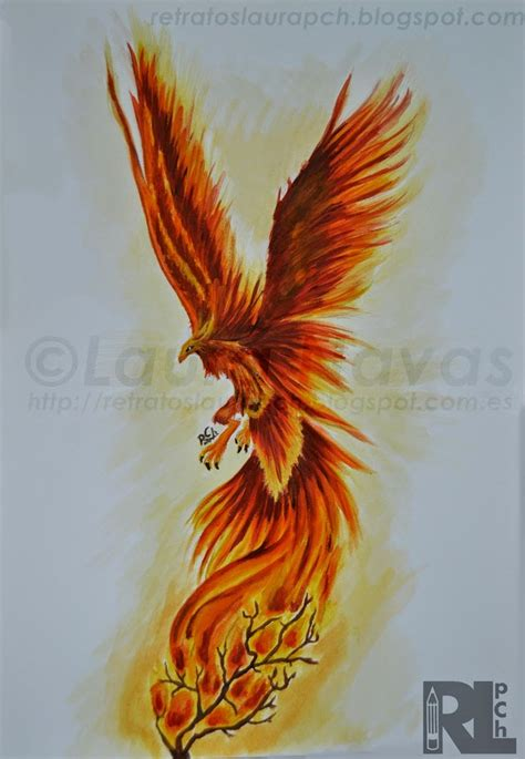 phoenix tattoo nelson 2129 best images about f 233 nix fire brighid on pinterest