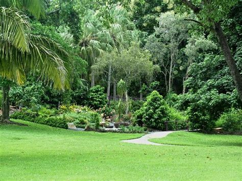 Darwin Botanical Gardens The Gardens Picture Of Darwin Botanic Gardens Darwin Tripadvisor