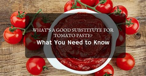 what s a good substitute for tomato paste what you need