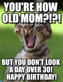 Happy Birthday Mum Meme - happy birthday mom cat memes
