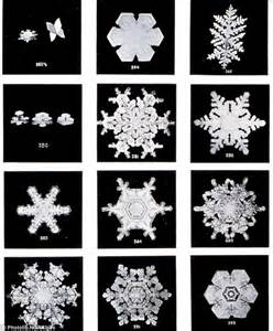 Wilson bentley farmer s first ever photographs of snowflakes taken in