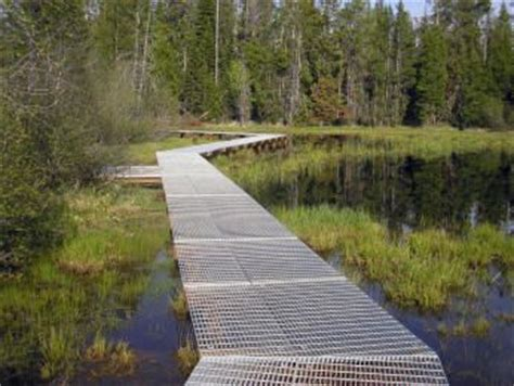 wetland boardwalk interesting texture wetland pinterest 조경 및 창조적인