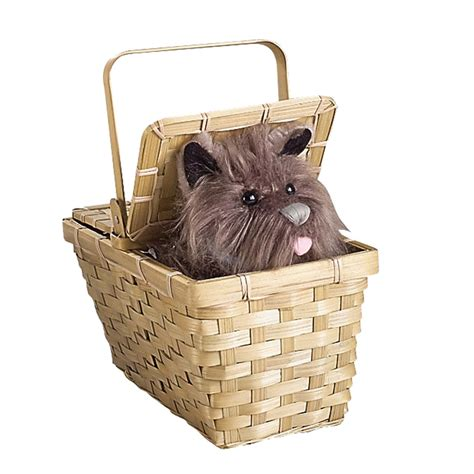 toto the toto the wizard of oz images toto in a basket hd wallpaper and background photos