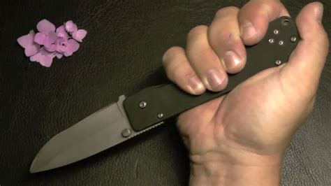 strider buck buck strider 880 knife review