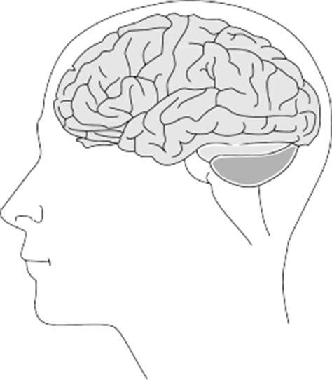 test quoziente intellettivo bambini scale wechsler wais wisc wppsi test di intelligenza