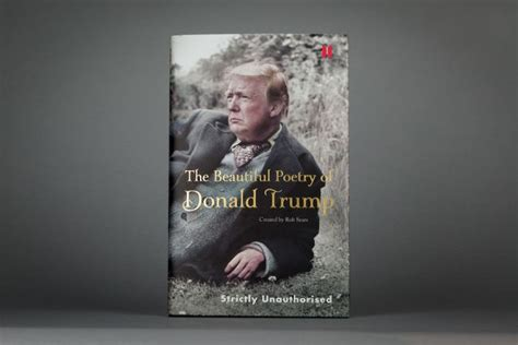 the beautiful poetry of donald canons books the unknown lyrical side of with help from a
