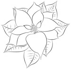 poinsettia coloring page poinsettia free printable