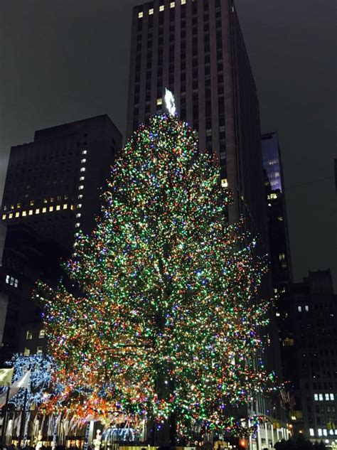what to do in new york during christmastime my style pill