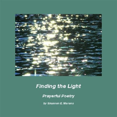 finding the light books finding the light blurb books
