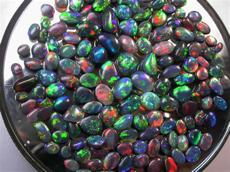 1 70 Cts Black Opal Jarong 100 cts collectors investor solid black opal parcel