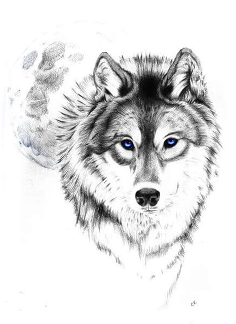 30 best stylized wolves images on wolf designs the is a canvas