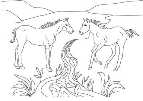 the cowboy and the unicorn coloring book books coloriages deux chevaux sauvages fr hellokids