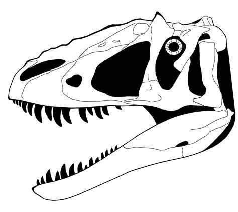 dinosaur skull coloring page yangchuanosaurus shangyouensis v yutyrannus huali