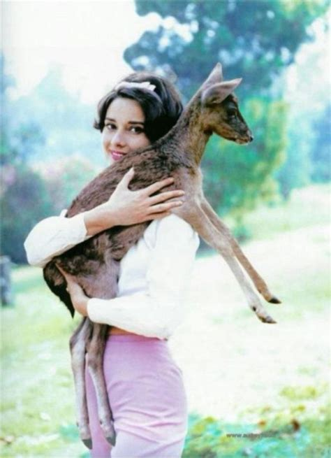 Kaos You Were It Well 16 Cr Oceanseven 26 candid photographs of hepburn with favorite pet fawn