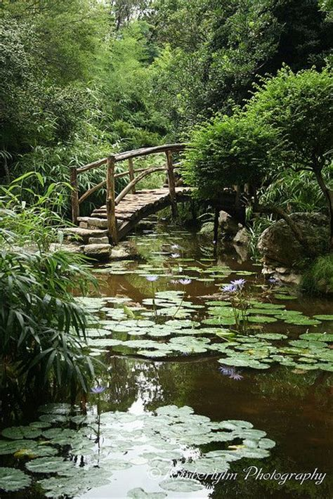 Pinterest The World S Catalog Of Ideas Zilker Botanical Garden Tx