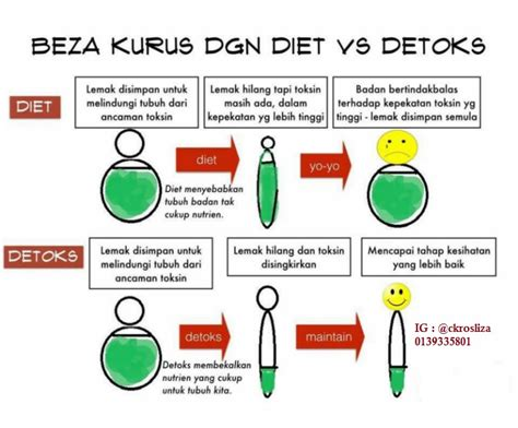 Diet Vs Detox by Mamaluv Beza Kurus Dengan Diet Vs Detox