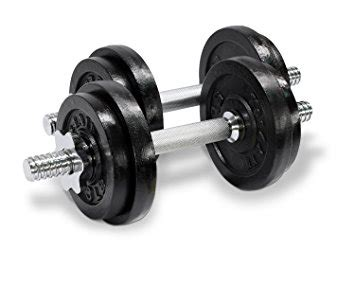 best adjustable dumbbells for home reviews for home