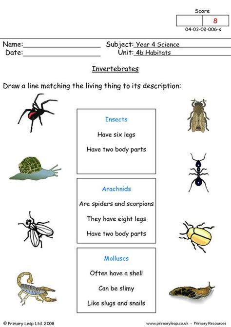free printable worksheets vertebrates invertebrates primaryleap co uk science worksheet invertebrates