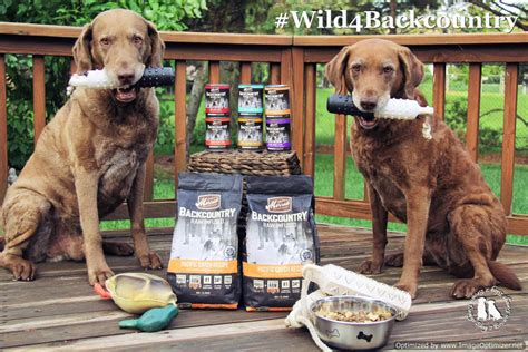 merrick backcountry puppy merrick backcountry food review wild4backcountry 2 brown dawgs
