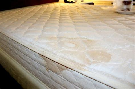 Stain On Mattress by Stains Mattress Picture Of Springhill Suites