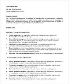 sle ceo description 8 exles in pdf word