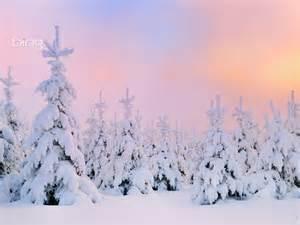 hintergrundbilder winter blackhairstylecuts com