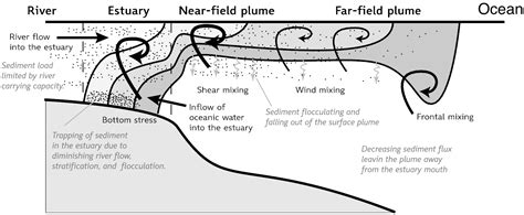 section 115e 100 ocean biogeochemical dynamics the u s global