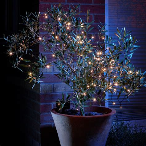 decorative led lights for homes set of 100 decorative led solar string lights auraglow