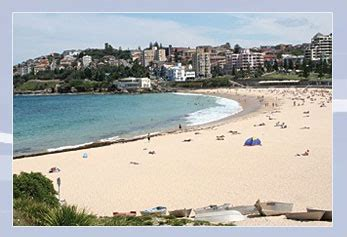 sydney s backpacker hostel budget accommodation coogee