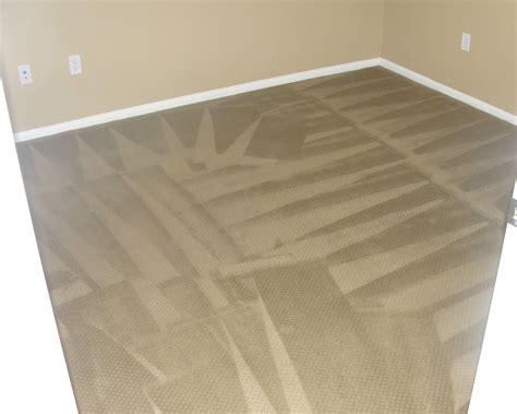 carlsbad carpet cleaning co floor matttroy