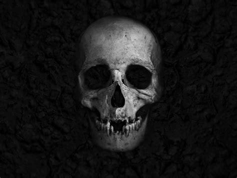 wallpaper skull hd