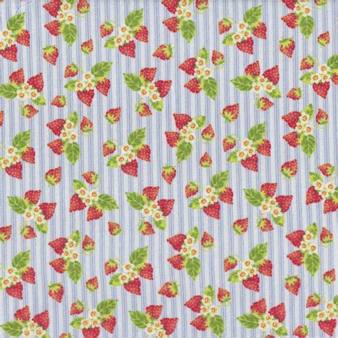 Quilt Fabric Finder by Strawberries And Flowers On Blue White Stripes Tea For Two