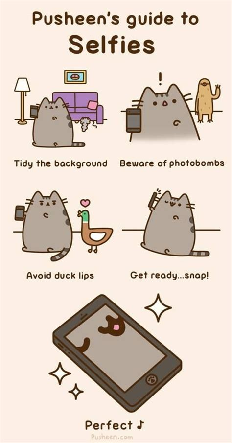 17 best images about pusheen cat on my