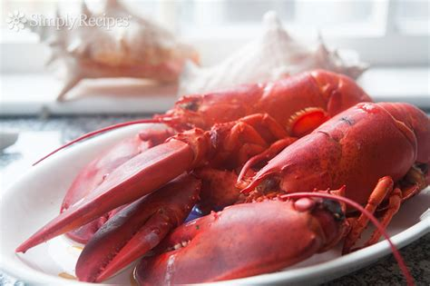 boiled lobster recipe how to cook and eat lobster