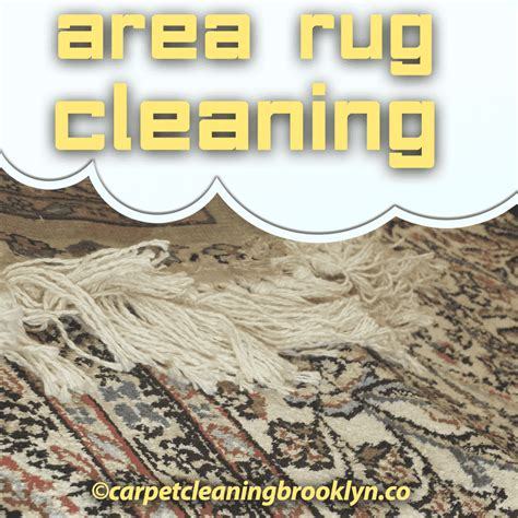 upholstery cleaning brooklyn area rug cleaning