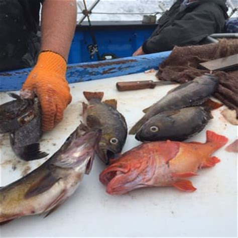 charter boat fishing emeryville huck finn fishing boat emeryville ca