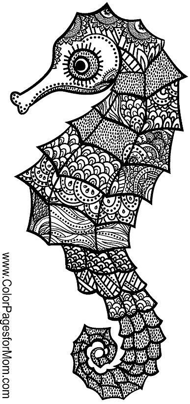 coloring pages for adults animal 938 best adult colouring under the sea fish mermaids