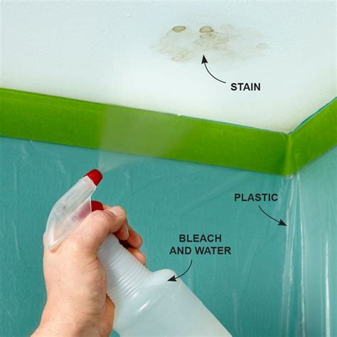 ceiling stain remover 25 best ideas about mildew remover on