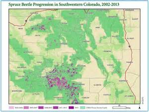 map of colorado rockies forests spruce beetles spreading fast in southern rockies